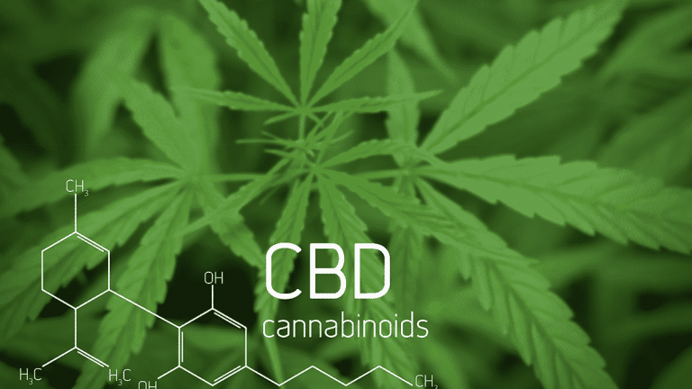 Study: Using Chemo with CBD for Cancer, Triples Survival Rates