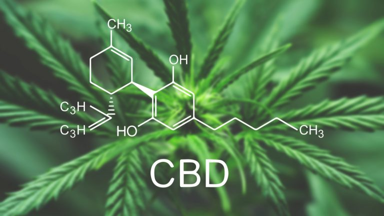 CBD 101: What Does CBD Stand For?