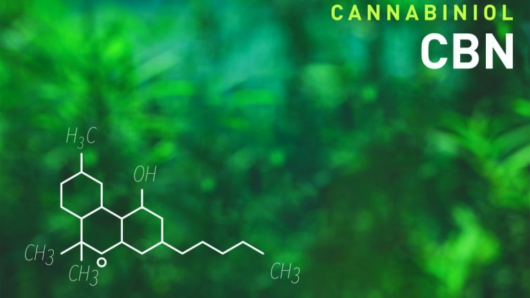 What is Cannabinol: A Beginner's Guide to CBN